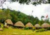 Rumah Adat Papua Beserta Gambar dan Penjelasan